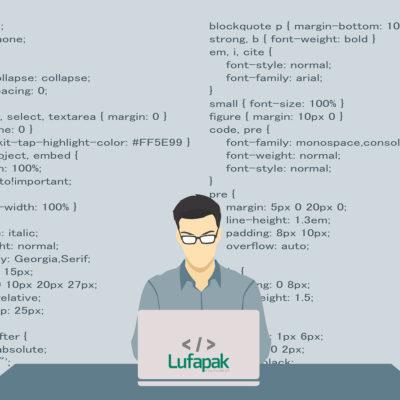 Lufapak Programmierer Job Stellenanzeige